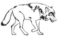 волк контура Иллюстрация штока