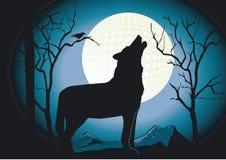 волк ночи иллюстрация вектора