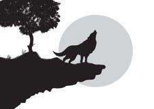 волк силуэта завывать Стоковая Фотография