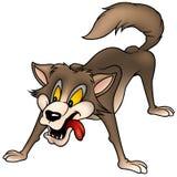 волк Стоковое фото RF