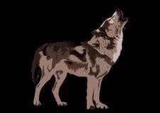 волк howlin Стоковые Фотографии RF