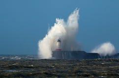 Волна и чайка над маяком Стоковое фото RF