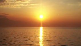 Волна моря в лучах солнца видеоматериал