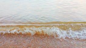 Волна моря на пляже в утре акции видеоматериалы