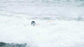 Волна моря покрывает счастливого человека искупанного в шторме акции видеоматериалы