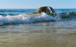 Волна моря ударяет берег, проломы волны моря на утесах Стоковое фото RF