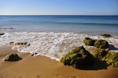 волна моря Стоковые Фотографии RF