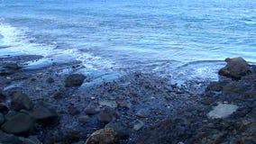 Волна пляжа сток-видео