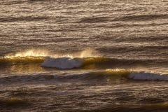 Волна с золотым spindrift в выравниваясь солнце стоковое фото rf