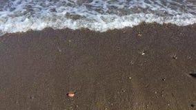 Волна ударяя берег видеоматериал
