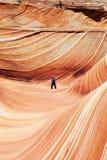 Волна - Buttes койота южные стоковые изображения