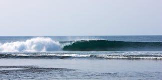 волна indo Стоковая Фотография