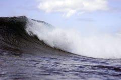 волна pt паники Стоковые Фотографии RF