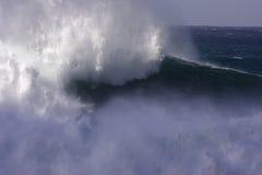 волна windswept Стоковые Фото