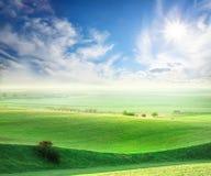 Волнистое поле с зеленой травой Стоковая Фотография RF