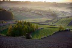 Волнистые поля, картины сказки стоковые фотографии rf