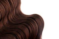 Волнистый каштановых волос пересечь белую изолированную предпосылку стоковое изображение rf