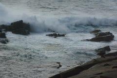 Волны ломая на острове кенгуру, южной Австралии Стоковые Изображения RF