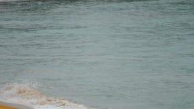 Волны на песчаном пляже сток-видео