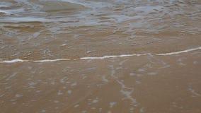 Волны на пляже - замедленное движение видеоматериал