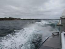 Волны от шлюпки Стоковые Фотографии RF