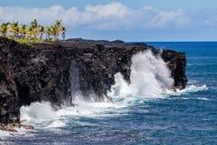 Волны разбивая против высокорослой скалы на острове Гаваи большом, брызгах в воздухе Пальмы на верхней части Тихий океан, небо &  стоковое изображение