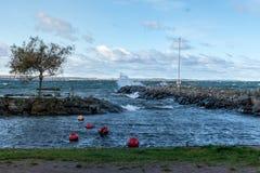 Волны свертывая внутри от моря стоковое изображение rf