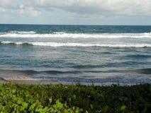 Волны ударяя на бразильском береге стоковые изображения rf
