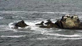 Волны ударяя утесы в море акции видеоматериалы