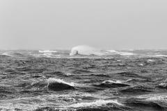 Волны урагана Стоковое Изображение