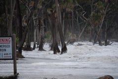 волны 2011 irene урагана Стоковое Изображение