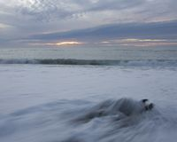 волны susnet driftwood Стоковые Изображения RF