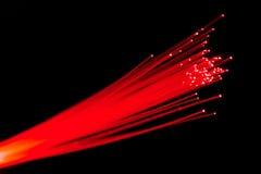 волокна оптически Стоковые Изображения