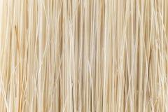 Волокна щетки, конца-вверх стоковая фотография rf