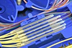 Волокно - оптический поднос соединения стоковые изображения rf