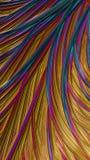 Волосатая радуга стоковые изображения rf