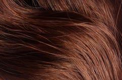 волосы близкая текстура съемки волос вверх волосы здоровые Стоковое фото RF