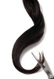 волосы вырезывания стоковые фотографии rf