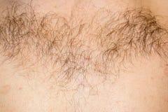 Волосы на конце-вверх мужского комода стоковая фотография