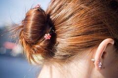 волосы плюшки Стоковое Изображение