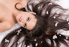 волосы цветка Стоковое Изображение