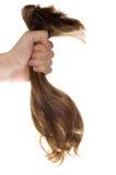 волосы Стоковые Фото