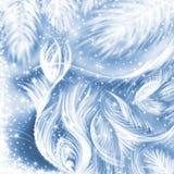 волшебная зима traceries Стоковые Фотографии RF
