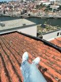 Волшебная панорама Ribeira de Порту стоковые фотографии rf