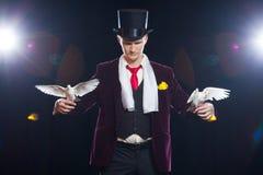 Волшебник с 2 белых голубя летая На черной предпосылке Стоковое Фото