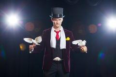 Волшебник с 2 белых голубя летая На черной предпосылке Стоковые Изображения RF