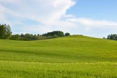 Волшебное поле с раздумьем голубого неба и расслабляющим плакатом Стоковые Фотографии RF