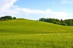 Волшебное раздумье обоев поля и расслабляющее изображение Стоковые Изображения RF