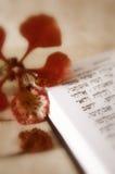 волшебные псалмы стоковая фотография rf