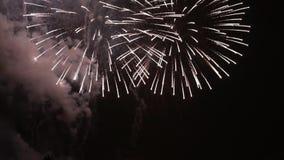 Волшебные цветки фейерверков на ночном небе Праздник ослабляет время с pyrotechnic выставкой ярк цветастые феиэрверки сток-видео